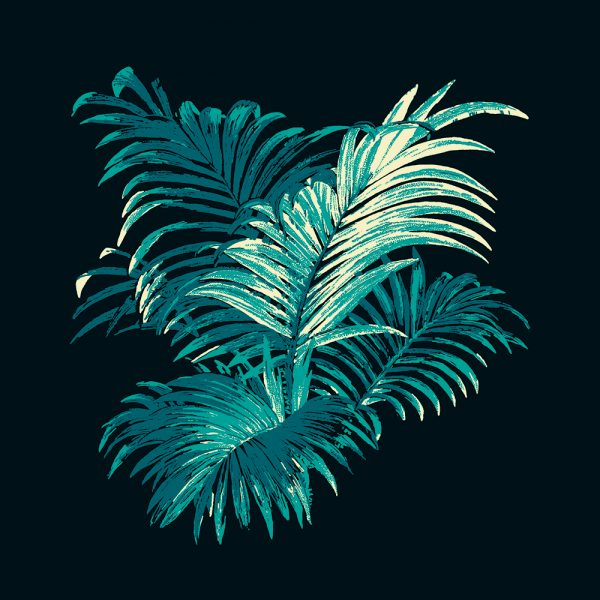 4 Colour Palm, Teal, framed canvas art